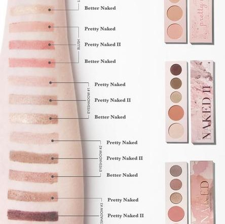Naked Palette Family